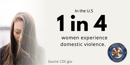 Domestic Violence Stat